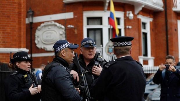Video nha sang lap WikiLeaks Assange bi loi khoi su quan Ecuador hinh anh 1