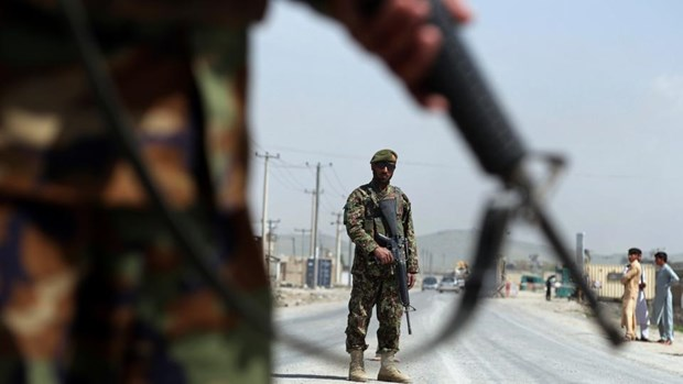 Luc luong an ninh Afghanistan day manh chien dich truy quet Taliban hinh anh 1