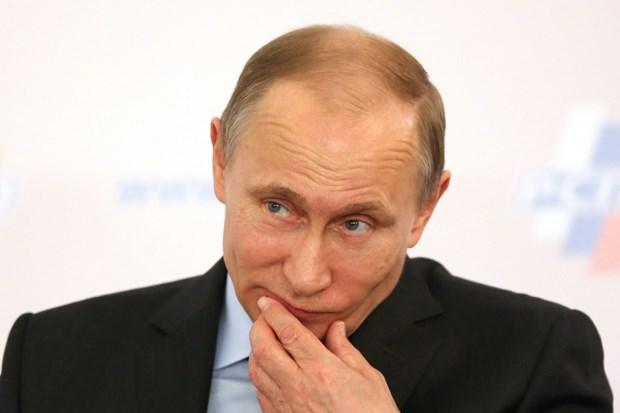 Bac tin don Tong thong Putin so huu biet thu dat gia o Tay Ban Nha hinh anh 1