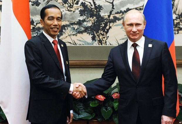 Indonesia va Nga cung cam ket tang cuong hop tac song phuong hinh anh 1