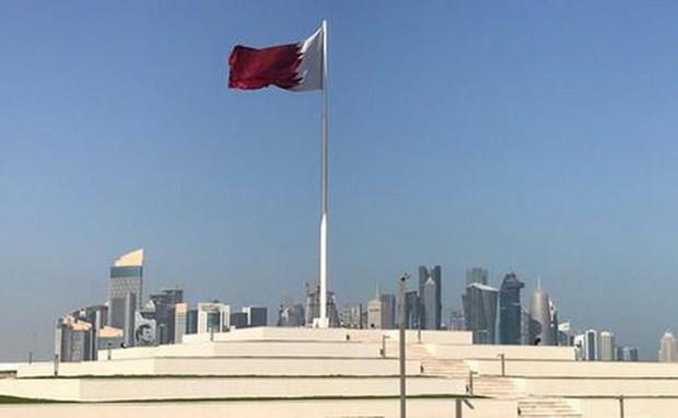 Qatar khong duoc moi tham du hoi nghi thuong dinh khu vuc hinh anh 1