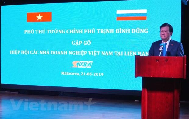 Pho Thu tuong Trinh Dinh Dung gap go doanh nghiep Viet Nam tai Nga hinh anh 1
