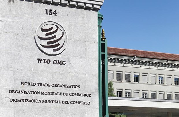 Dien dan SPIEF 2019: Nga keu goi tang cuong hieu qua cua WTO hinh anh 1