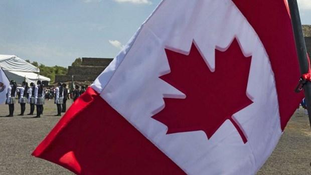 Chuyen gia Scotiabank: Kinh te Canada dang tren da khoi sac hinh anh 1
