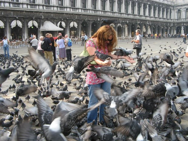 Danh sach nhung cam doan la lung tai thanh pho Venice cua Italy hinh anh 2