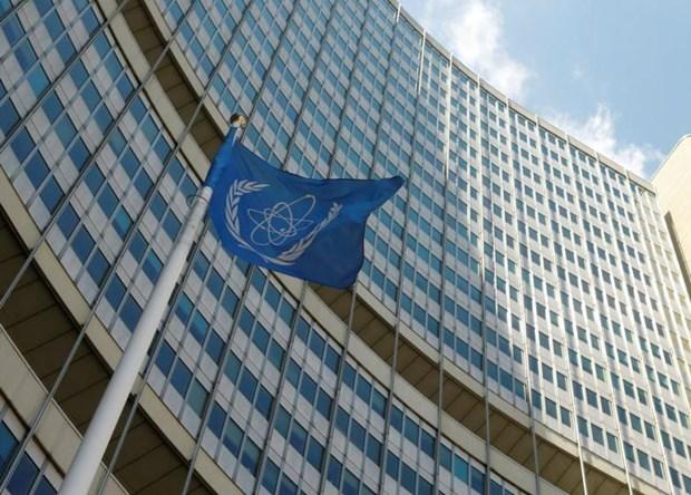 IAEA an dinh thoi diem tien hanh bo nhiem Tong Giam doc moi hinh anh 1
