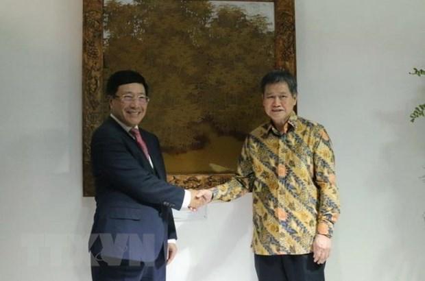 'Viet Nam se dam duong tot vai tro Chu tich ASEAN nam 2020' hinh anh 1