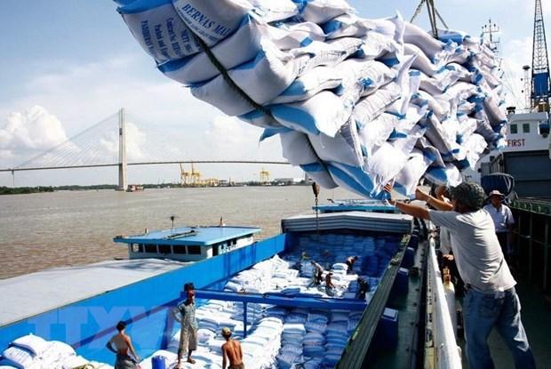 Giá gạo xuất khẩu của Việt Nam giảm. Ảnh: Minh Huệ/TTXVN