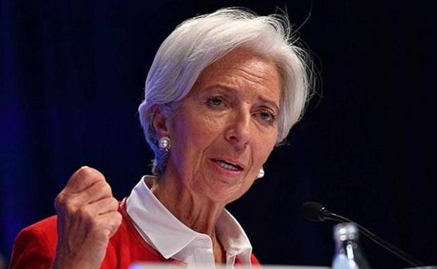 Cuu Tong Giam doc IMF: Tang truong toan cau 'mong manh va bi de doa' hinh anh 1