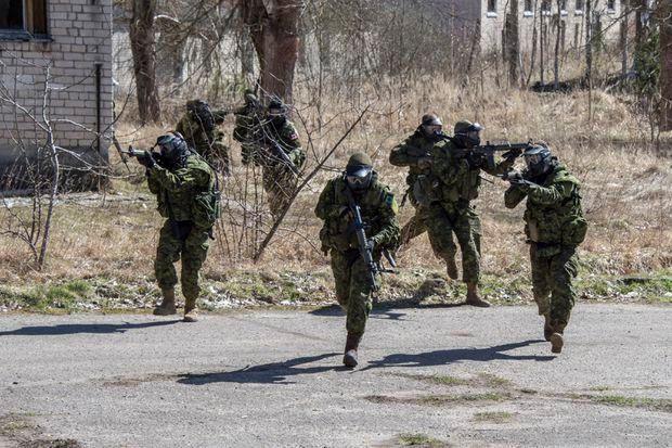 Nga thanh tra tai Latvia va Dan Mach truoc cuoc tap tran cua NATO hinh anh 1