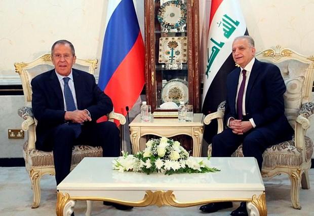 Nga, Iraq thao luan ve sang kien giam cang thang o Vinh Persian hinh anh 1