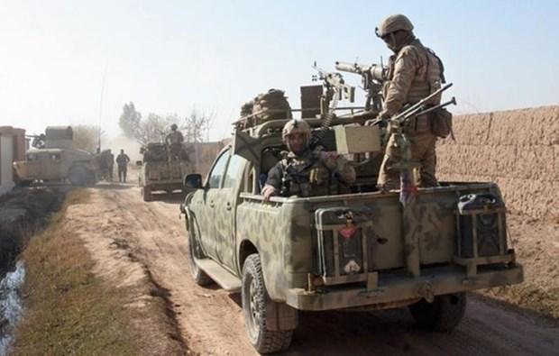 Afghanistan giai phong 16 ngoi lang, tieu diet 12 phien quan Taliban hinh anh 1