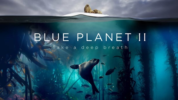Loat phim tai lieu 'Blue Planet II' gianh giai thuong Chatham House hinh anh 1