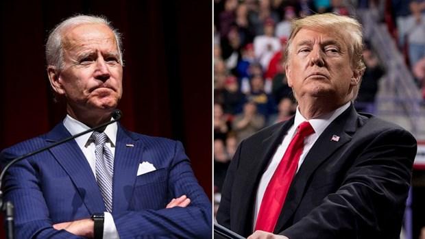 Ong Biden vuot qua Tong thong Trump trong cuoc tham do toan quoc hinh anh 1