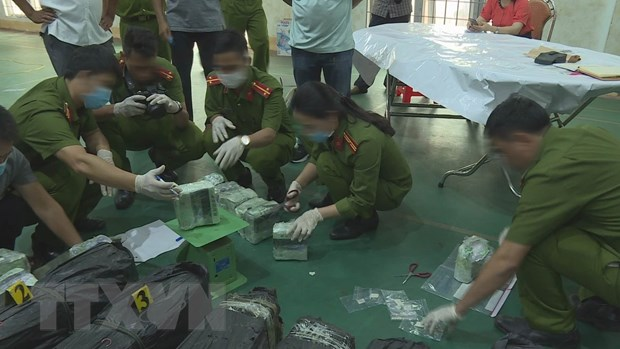 Dak Lak: Phat hien vu van chuyen trai phep 200kg ma tuy da hinh anh 1