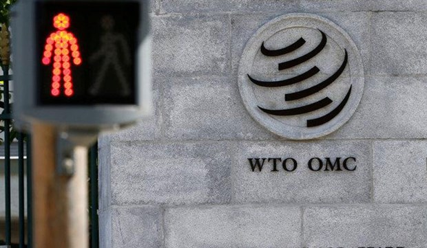 WTO doi mat kho khan sau khi ong Azevedo roi vi tri 'thuyen truong' hinh anh 1