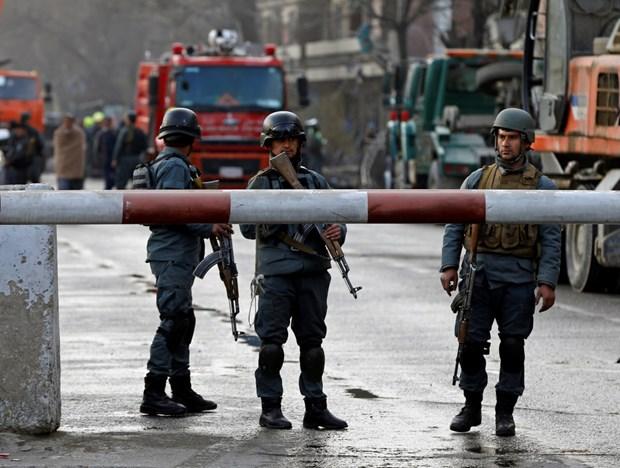 Giao tranh dam mau o Afghanistan, hang tram nguoi thuong vong hinh anh 1