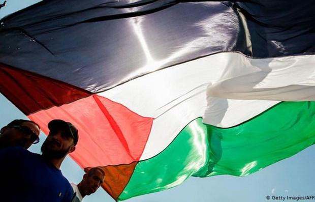 Hai phong trao Hamas va Fatah nhat tri to chuc tong tuyen cu Palestine hinh anh 1