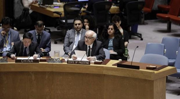 Chinh quyen Palestine thuc day hoi nghi hoa binh quoc te ve Trung Dong hinh anh 1