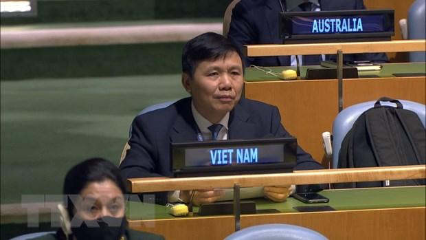Viet Nam ung ho Hoi dong Bao an tang cuong hop tac voi Toa an Quoc te hinh anh 1