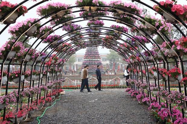 Khai mac le hoi hoa Xuan tai vung trong hoa lon nhat mien Bac hinh anh 1
