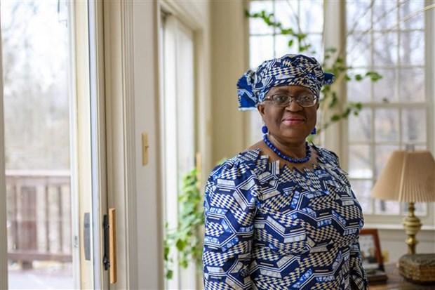 Ba Ngozi Okonjo-Iweala tro thanh nu Tong giam doc WTO dau tien hinh anh 1
