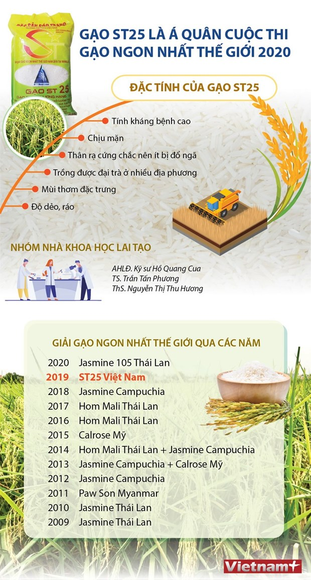 Gao ST25 va cau chuyen bao ho thuong hieu san pham cua Viet Nam hinh anh 3