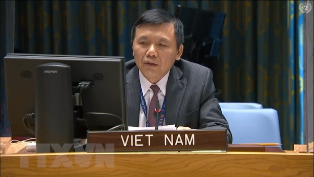 Viet Nam keu goi Mali tang cuong cac no luc hoa hop dan toc hinh anh 1