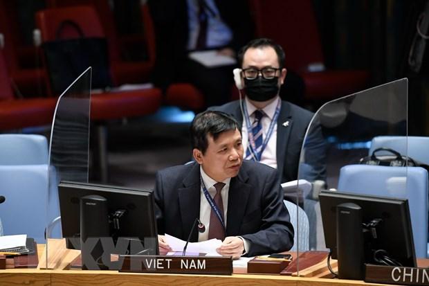 Viet Nam keu goi cac ben chap nhan de xuat hoa binh cho Yemen hinh anh 1