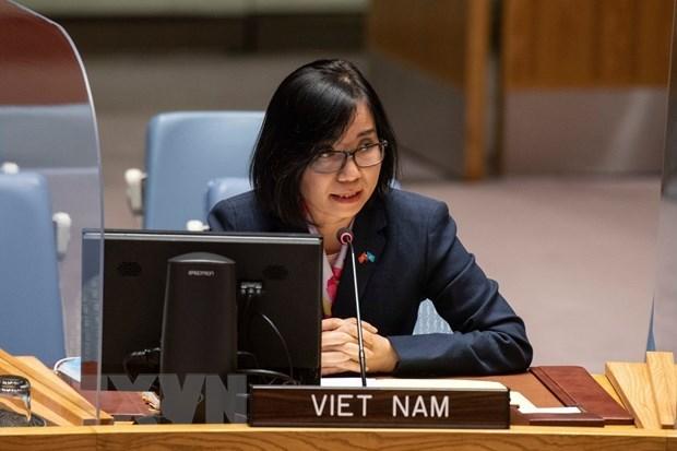 Viet Nam keu goi xu ly thach thuc an ninh, nhan dao o Tay Phi va Sahel hinh anh 1