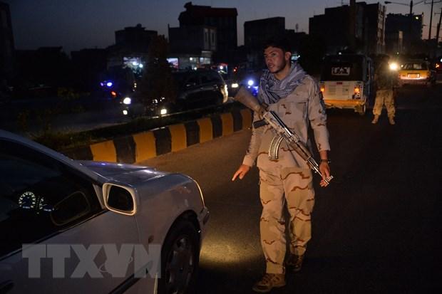 Quan doi Afghanistan tieu diet it nhat 100 tay sung Taliban hinh anh 1