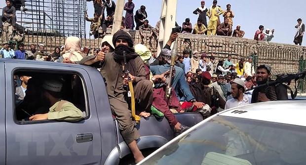 Afghanistan: It nhat 3 nguoi bieu tinh chong Taliban thiet mang hinh anh 1