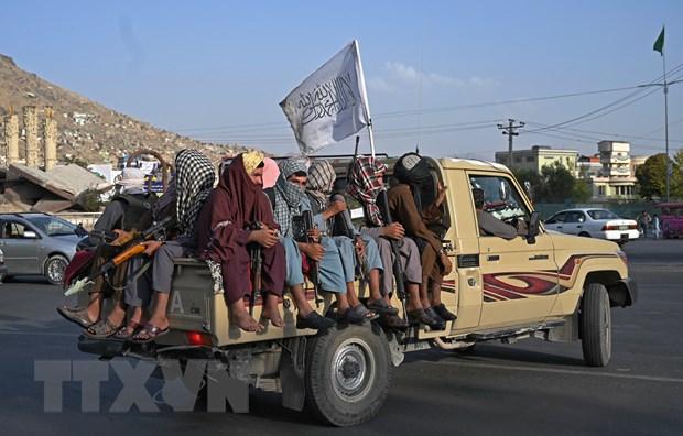 Nga, An Do nhat tri hop tac trong giai quyet van de Afghanistan hinh anh 1