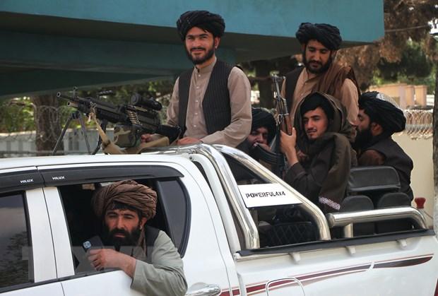 EU: Khong co lua chon nao khac ngoai dam phan voi Taliban hinh anh 1