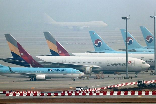 Han Quoc xem xet thoa thuan mua Asiana Airlines cua Korean Air hinh anh 1