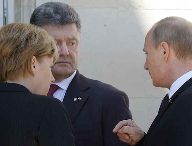 Ong Putin va tong thong dac cu Ukraine thao luan lenh ngung ban hinh anh 1