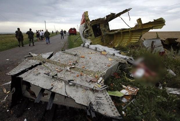 Ukraine dam bao tiep tuc dieu tra vu MH17 du Thu tuong tu chuc hinh anh 1