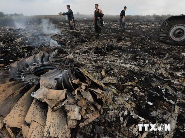 Nhom dieu tra vu MH17 chi con gan 1 thang de thu thap chung cu hinh anh 1