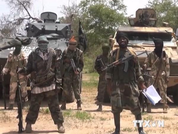 Phien quan Boko Haram tan cong bang rocket tu Nigeria sang Cameroon hinh anh 1