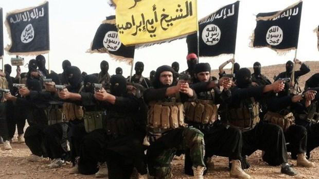 Chuyen gia: Nhom IS va Al-Qaeda dang tranh gianh anh huong hinh anh 1