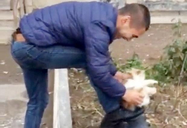 [Video] Chang trai gay phan no khi dung meo de lau giay hinh anh 1