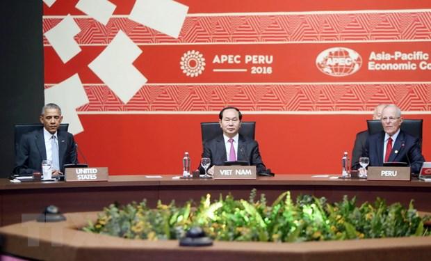 Phat bieu cua Chu tich nuoc Tran Dai Quang tai Phien be mac APEC 2016 hinh anh 1