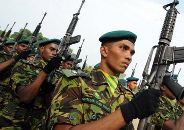 Sri Lanka bat giu hon 500 binh sy dao ngu chi trong mot ngay hinh anh 1