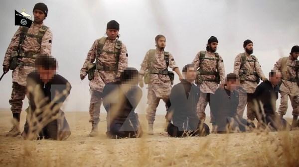 SOHR: Cac thanh vien IS hanh quyet 19 dan thuong o Syria hinh anh 1
