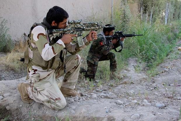 Afghanistan tieu diet 34 phien quan Taliban trong chien dich dac biet hinh anh 1