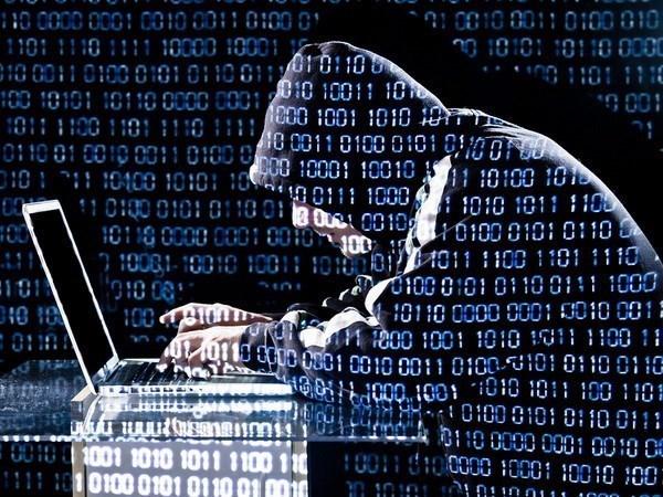 Truyen thong My: Cac tin tac Nga danh cap du lieu cua NSA hinh anh 1