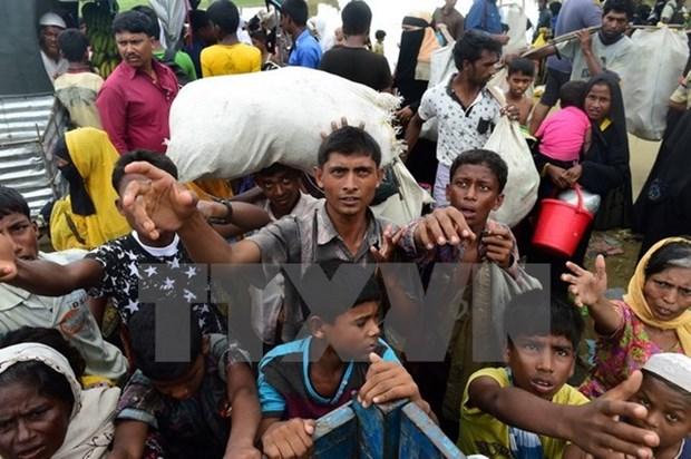HDBA LHQ muon gay suc ep doi voi Myanmar vi van de Rohingya hinh anh 1