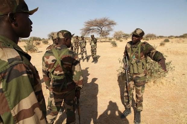 It nhat 7 binh sy Niger thiet mang trong vu tan cong cua Boko Haram hinh anh 1