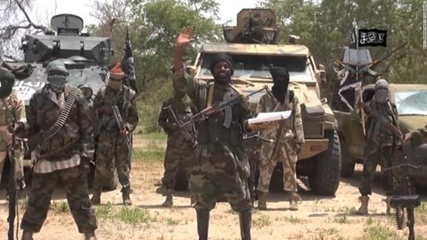 Chinh phu Nigeria dam phan ve lenh ngung ban voi Boko Haram hinh anh 1