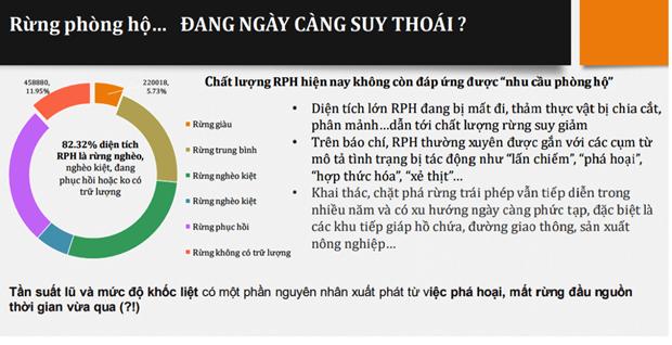 Viet Nam giam 1,7 trieu hecta rung phong ho trong vong 10 nam qua hinh anh 3